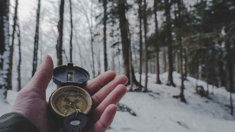 person holding compass in forest